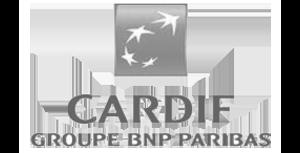 BNP Paribas Cardif España AIE