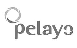 logos-clientes_0014_BN_Pelayo